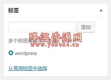 WordPress纯代码添加自动锚文本tag内链优化版 技术教程 第1张