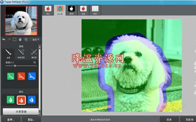 Topaz ReMask v5.0.1 中文汉化版 电脑抠图软件 Windows 第1张