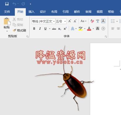 蟑螂桌面宠物 VirtualCockroach v1.3 免费版 恶心人的电脑桌面 Windows 第1张