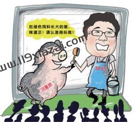 网易养猪场是什么梗?网易被称为养猪场的原因