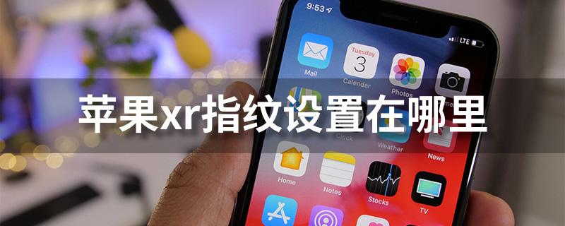 苹果xr指纹设置在哪里?苹果xr指纹设置图文教程