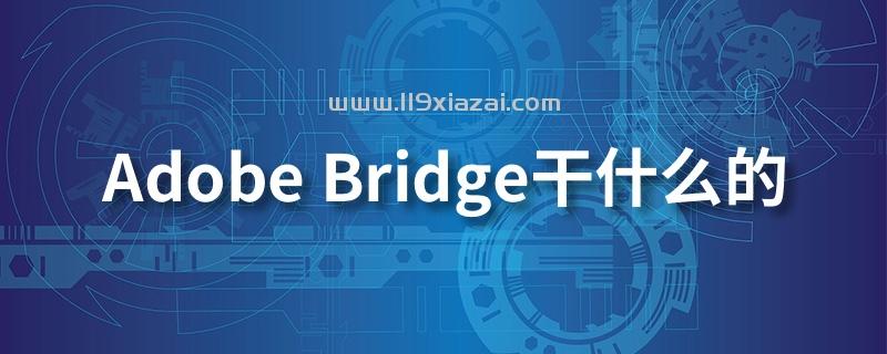 adobe bridge干什么的
